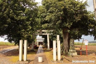 香取神社 古河市久能1