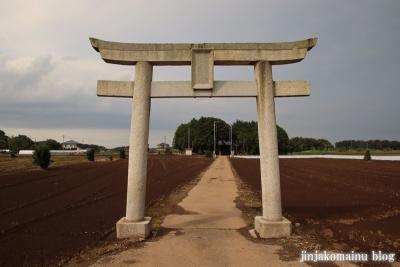 香取神社 古河市前林1