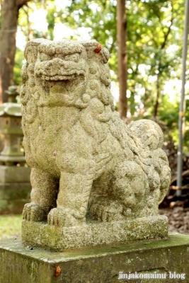 鹿島神社 古河市下大野27