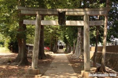 熊野神社 下都賀郡野木町大字野渡6