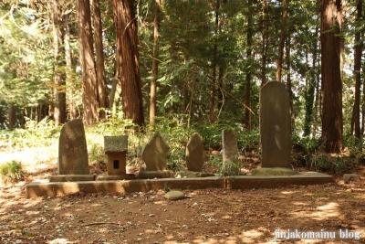 熊野神社 下都賀郡野木町大字野渡17