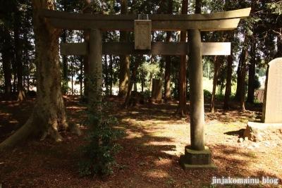 熊野神社 下都賀郡野木町大字野渡26