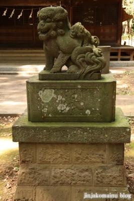 熊野神社 下都賀郡野木町大字野渡50