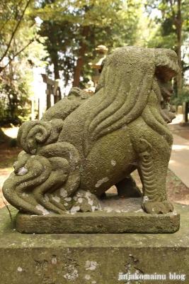 熊野神社 下都賀郡野木町大字野渡52