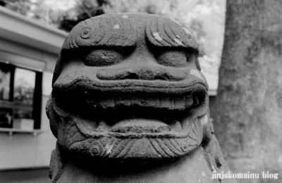 西堀氷川神社(さいたま市桜区西堀)2