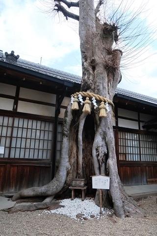 20-2大神神社 (208)