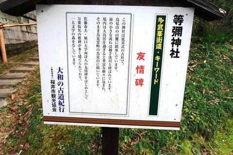 20-2大神神社 (218)