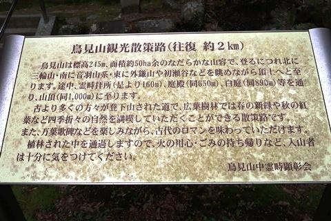 20-2大神神社 (240)