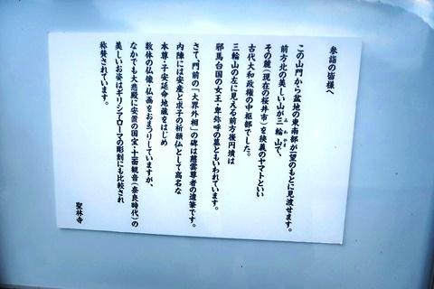 20-2大神神社 (260)