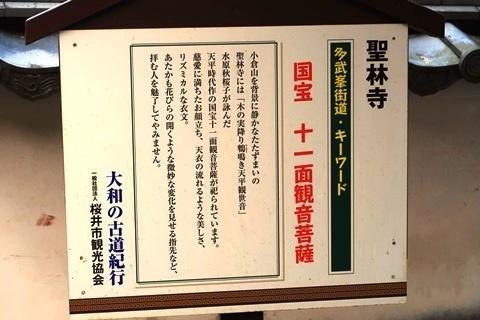 20-2大神神社 (276)
