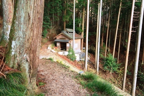 20-2大神神社 (298)