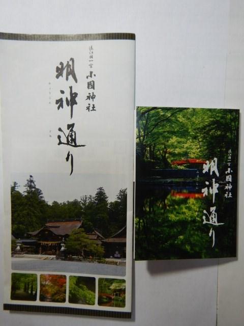 249-1-34.jpg