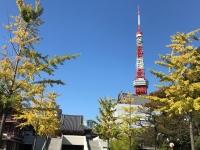 秋の増上寺