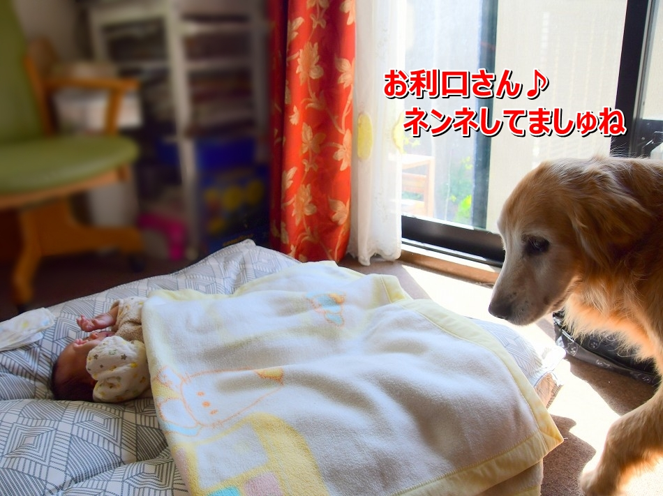 DSC_4419ライちゃんお利口さんでしゅね