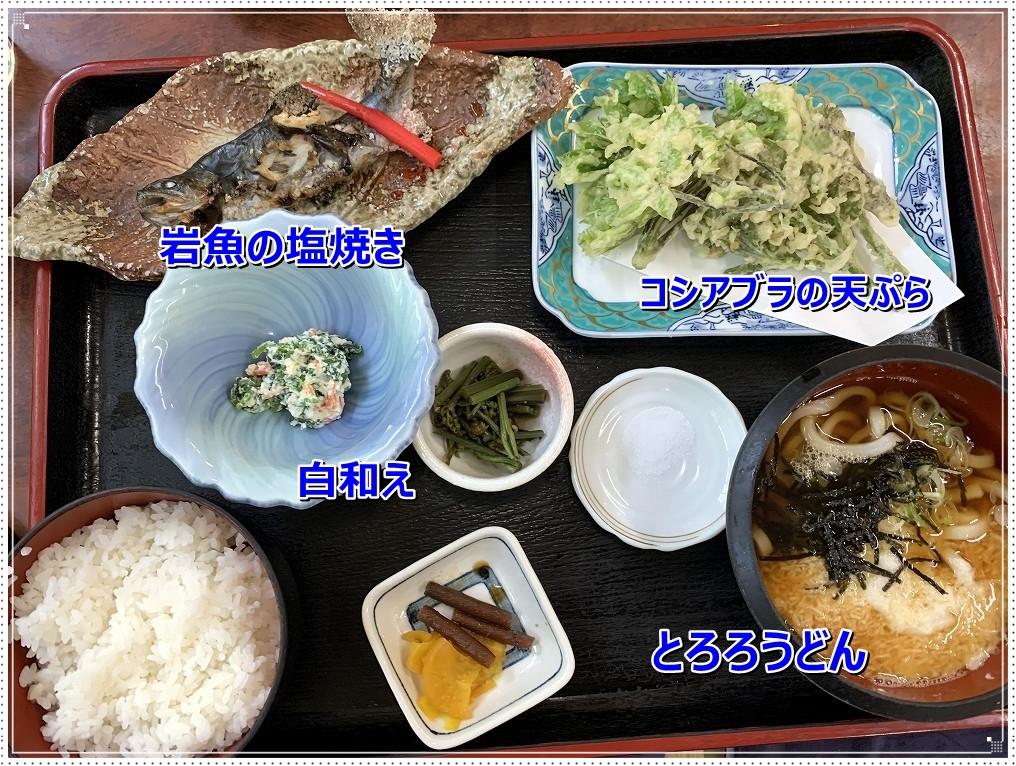 IMG_4401岩魚とコシアブラの天ぷら