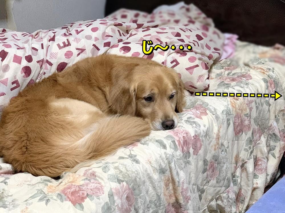 IMG_4572じ~