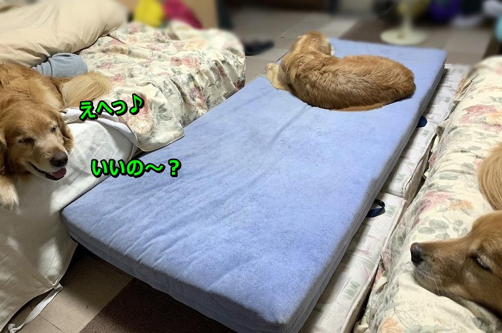 IMG_4575恵へ♪いいの~?