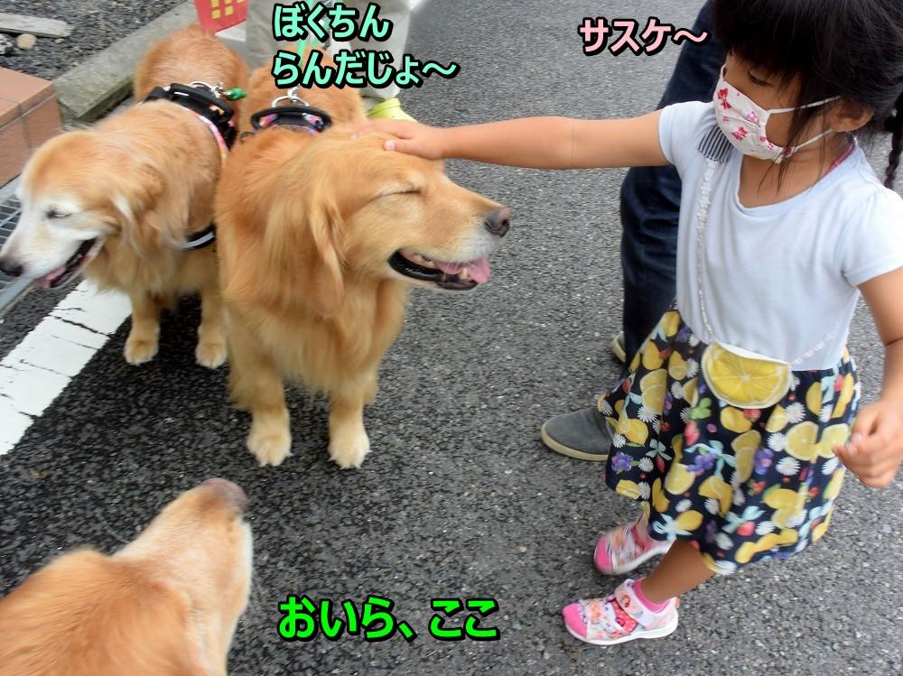 DSC_9836サスケ♪らんだじょ~