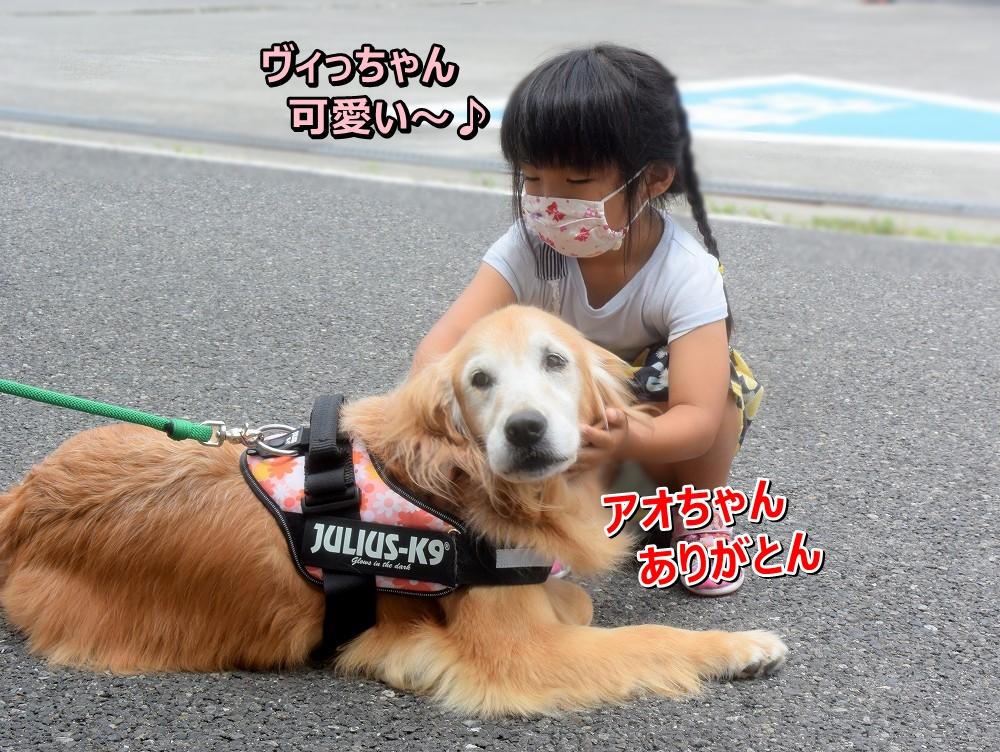 DSC_9852ヴィっちゃん可愛い~