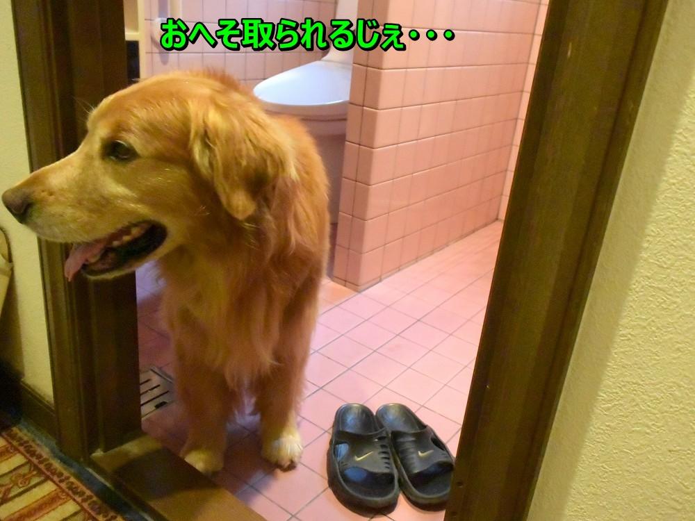 DSC_0071怖いじぇ~