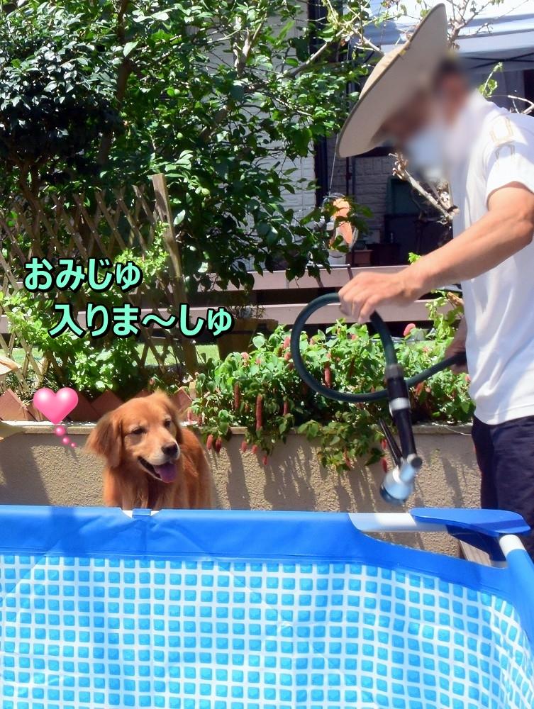 DSC_0225おみじゅ入りま~す
