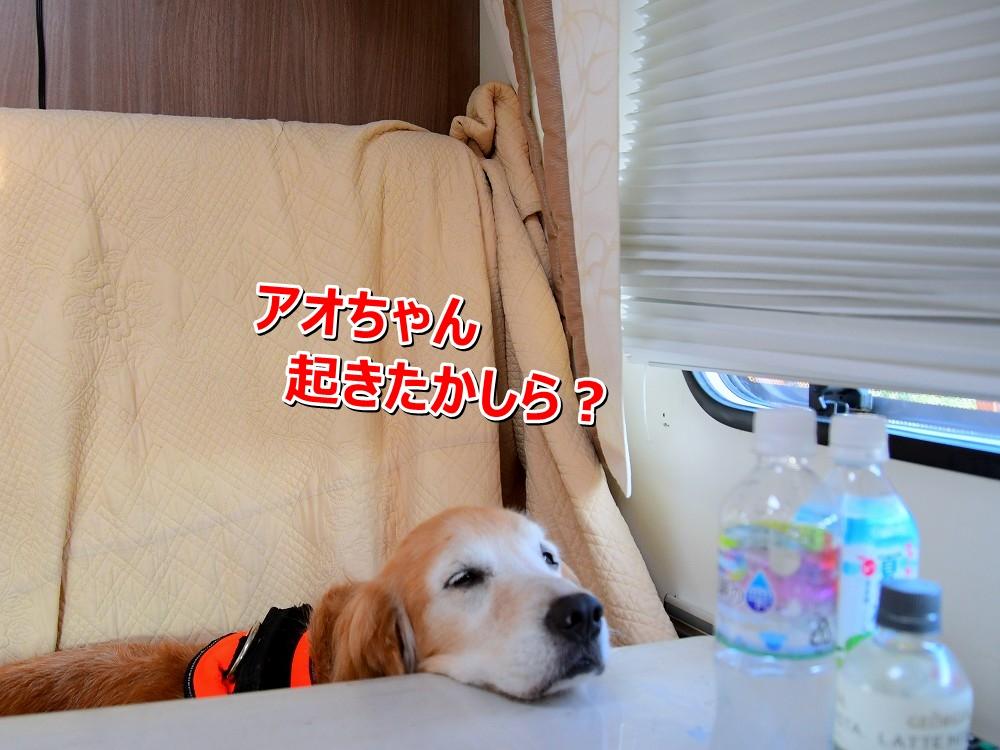 DSC_8296ふ~・・・