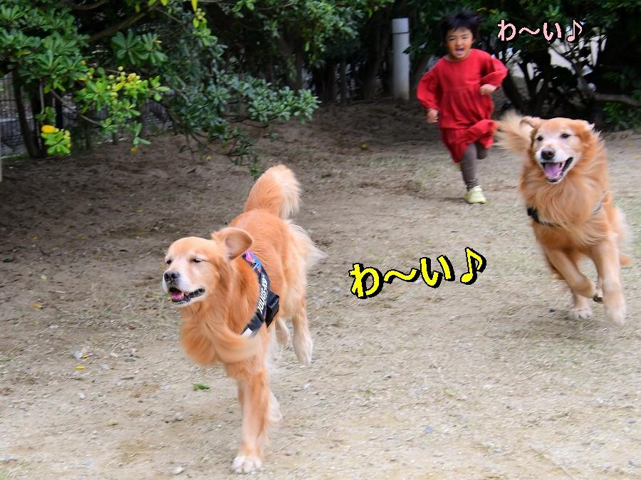 DSC_2139わ~い