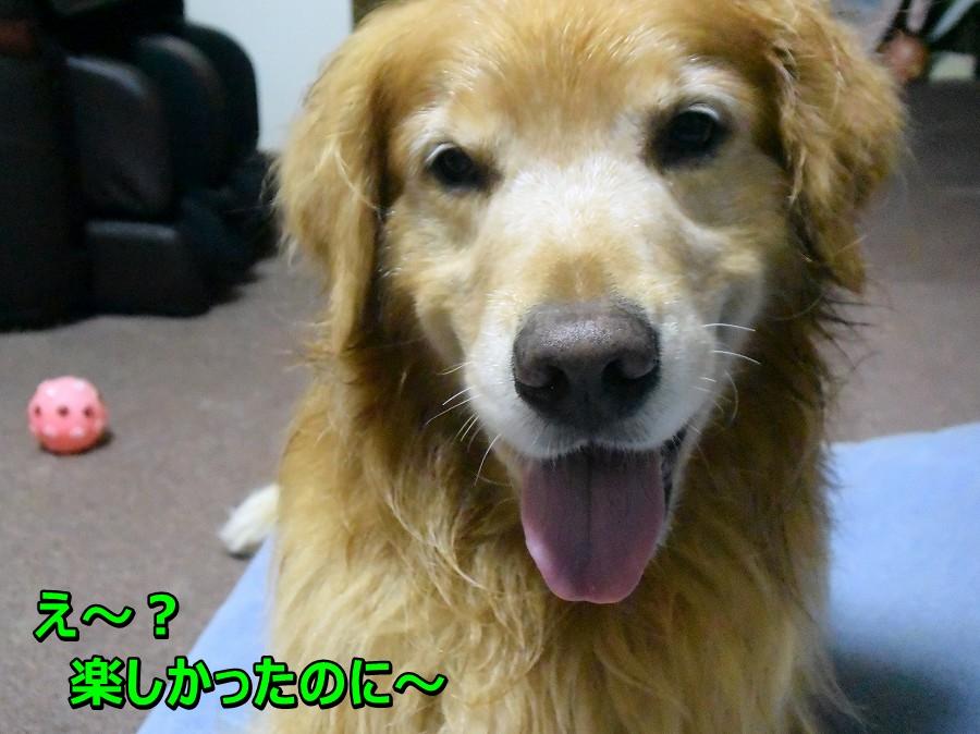 DSC_0639え~?