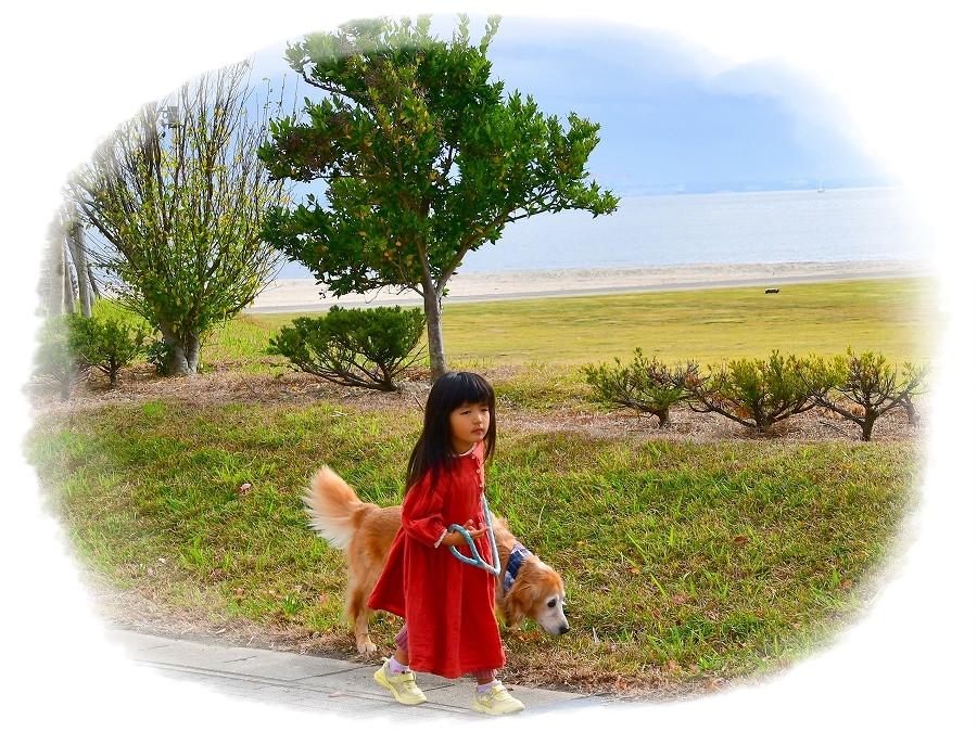 DSC_2785nakayokuお散歩