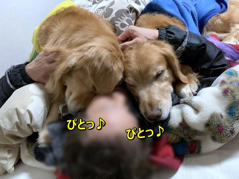S__7217193.jpg
