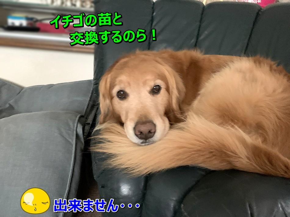 S__7315537.jpg