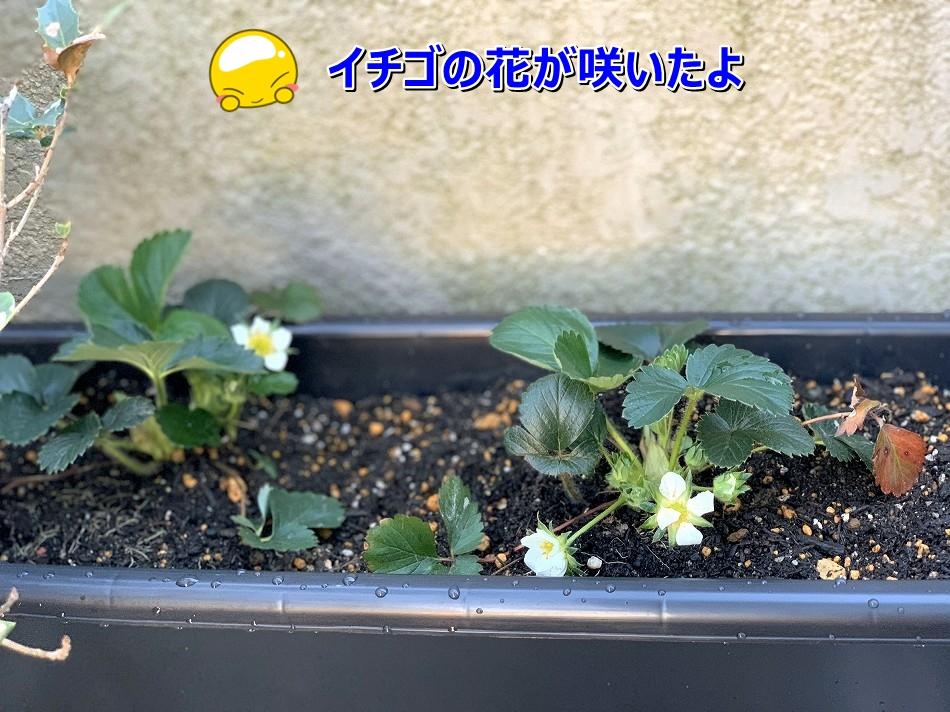 S__7315542.jpg