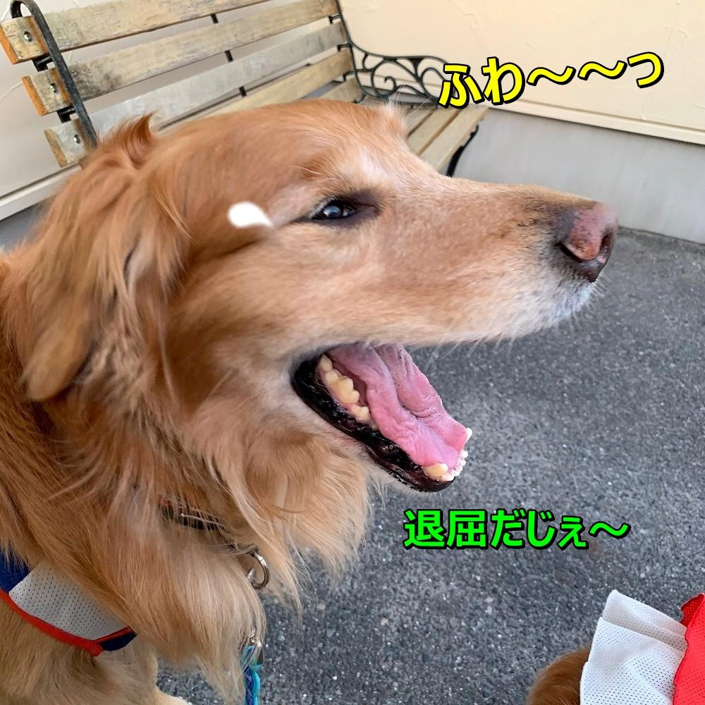 S__7725079.jpg