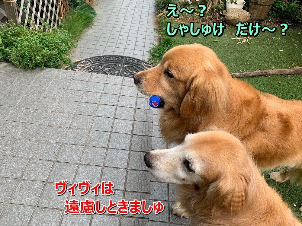 S__8364191.jpg