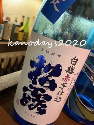 20200615_夏の松露