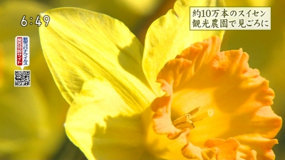 20200317-193312-180.jpg
