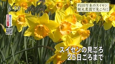 20200317-193350-826.jpg