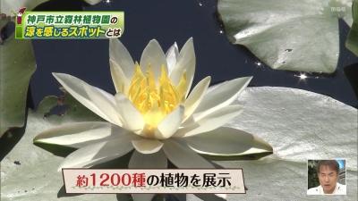 20200826-160630-546.jpg