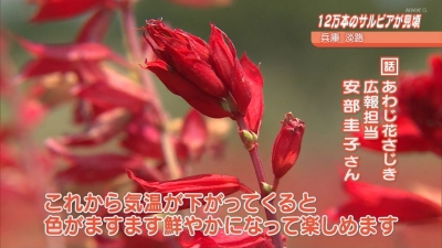 20200909-143527-964.jpg