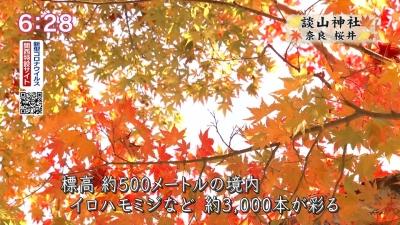 20201116-192303-893.jpg