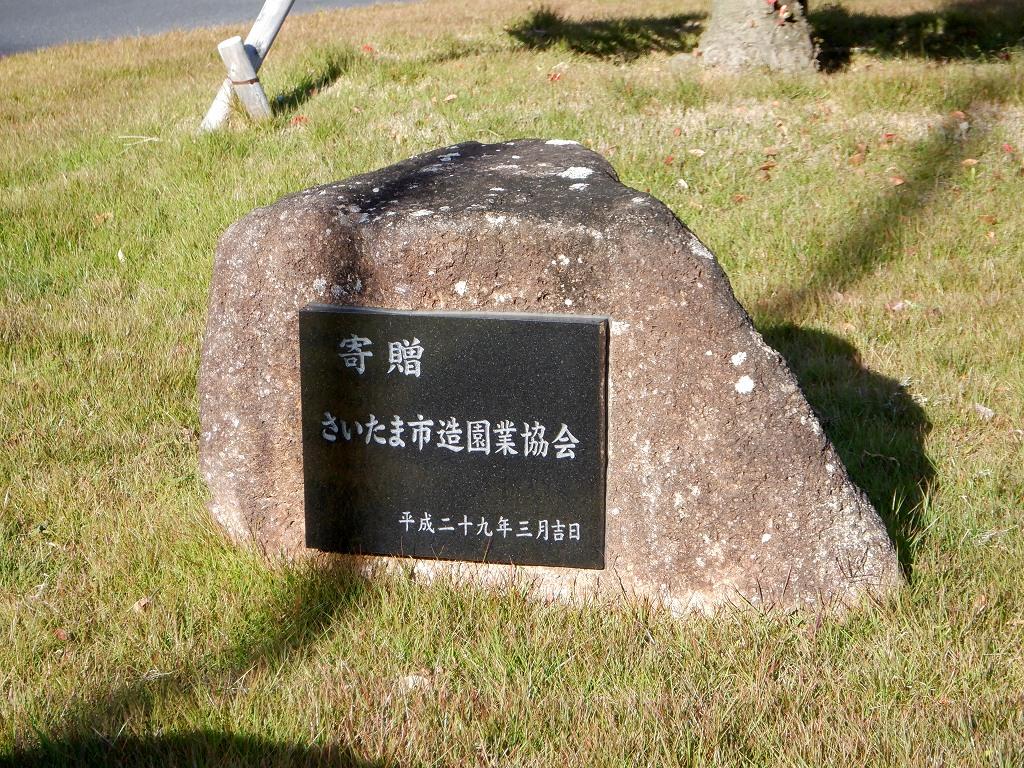 iwatsuki6_1.jpg