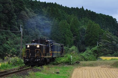 DSC_7500 (2)-1