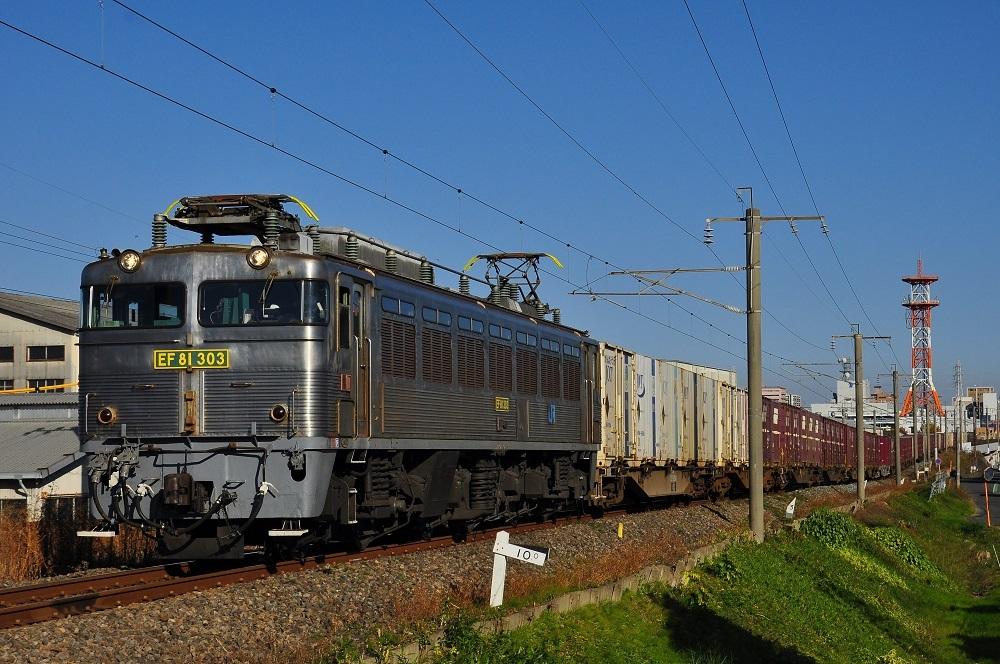 DSC_9639 (2)-1