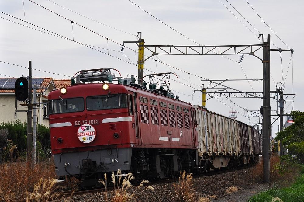 DSC_9958 (3)-1