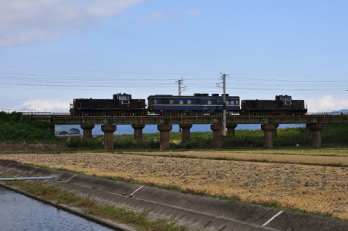 DSC_7409-1.jpg