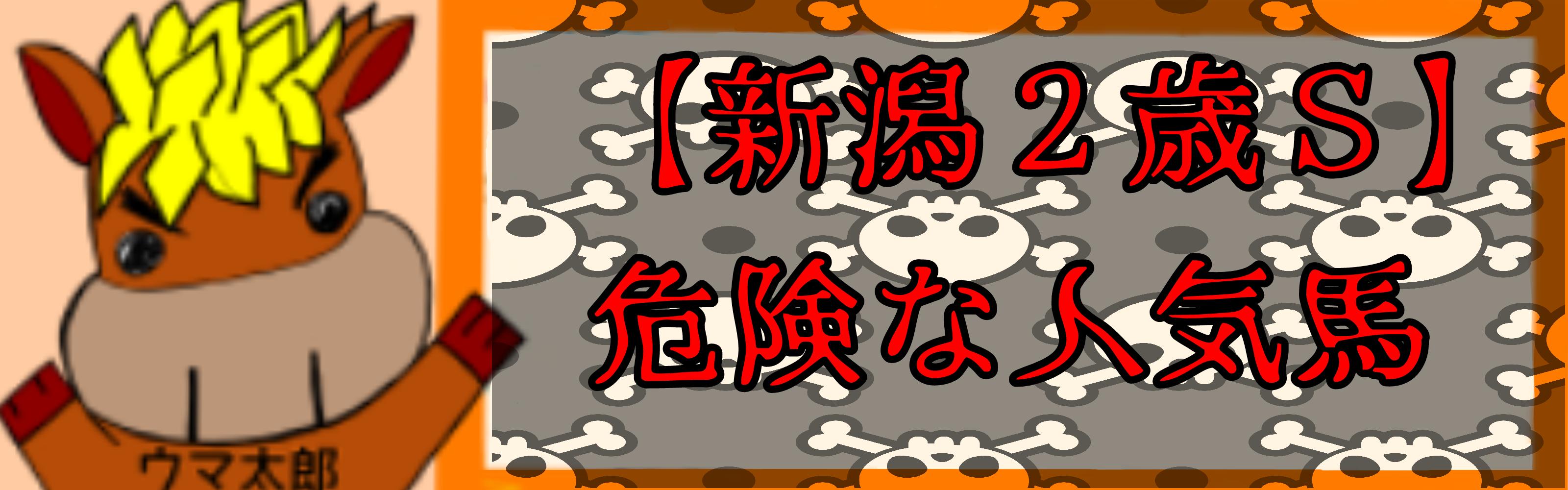 【新潟2歳S】危険な人気馬