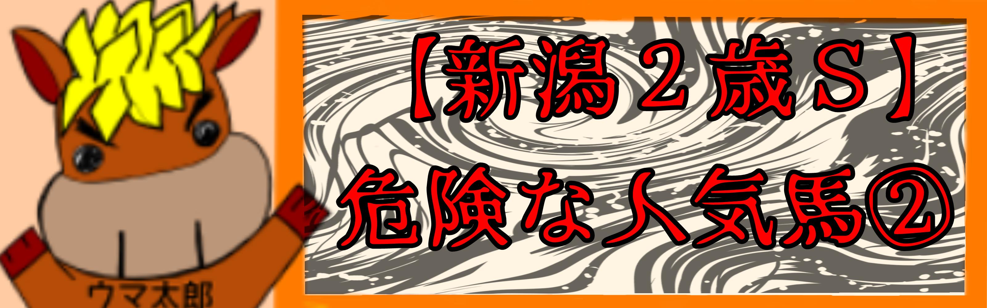 【新潟2歳S】危険な人気馬②