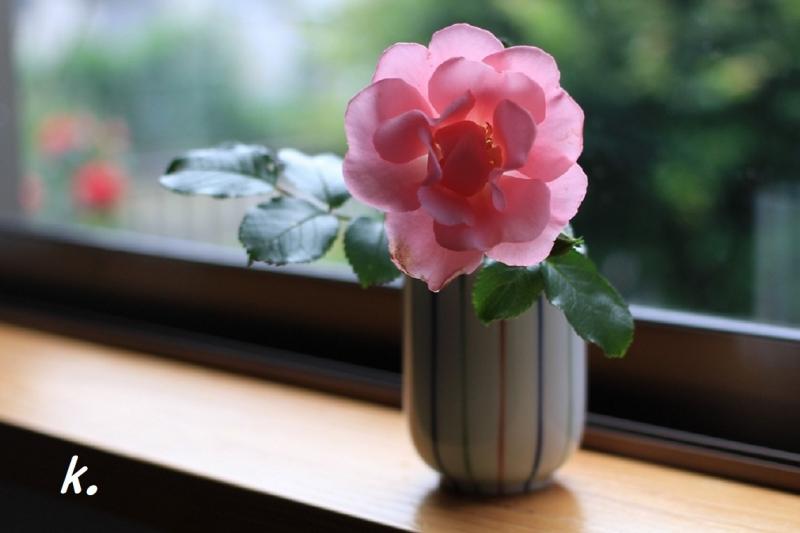 寝室のバラ