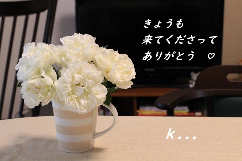 バラを飾る 白