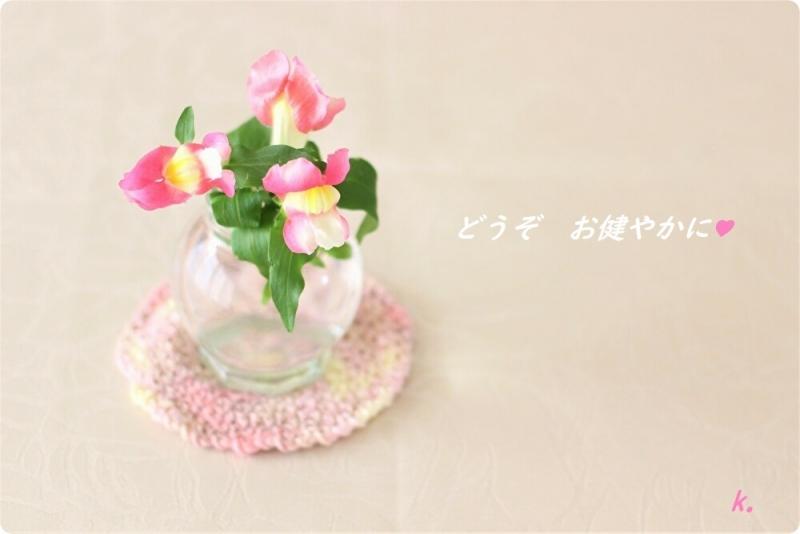 グリーティング金魚草ピンク